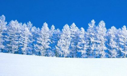 50 cm di neve in Piemonte