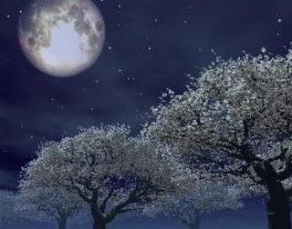 Fotografie con la luna piena