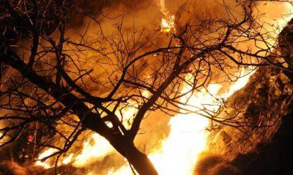 Piromani appiccano incendio al Tracciolino