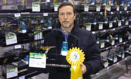 Zampese campione del mondo di ornitologia