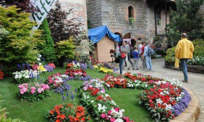 Candelo in fiore chiude a 20mila visitatori