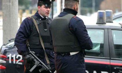 Maxi operazione antidroga dei carabinieri