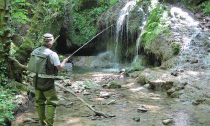 Divieto di pesca in alta Valle Cervo