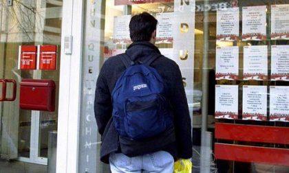 Giovani: tra il 2008 ed il 2012, nel Biellese, disoccupazione raddoppiata