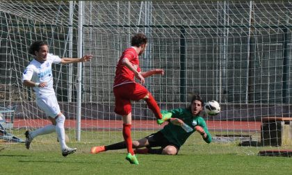 Calcio Eccellenza, la Junior Biellese batte nel finale il Volpiano e conquista la salvezza