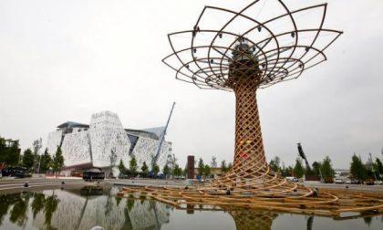 Expo2015 ha già vinto la sfida