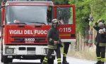 Albero si abbatte sulla Provinciale a Masserano