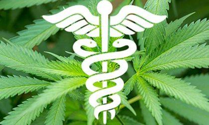 Farmaci a base di cannabinoidi: via libera della Regione