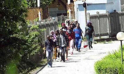 «Migranti, Chiamparino lanci referendum»
