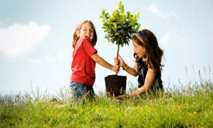 Festa degli alberi a Zubiena con i bambini