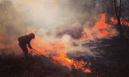 Piromani in azione, brucia la Baraggia