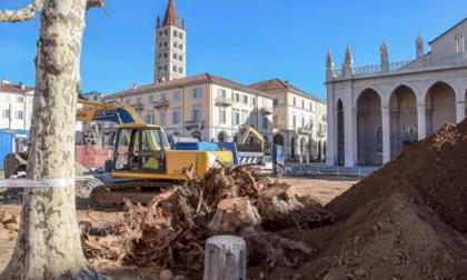Piazza Duomo, via altri sei platani