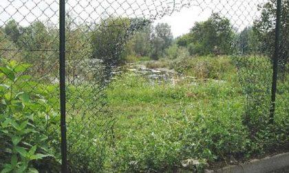 Tagliano la rete della recinzione
