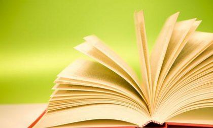 """A Cavaglià una bibliotechina """"libera"""""""