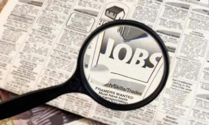 Offerta per un lavoro in municipio