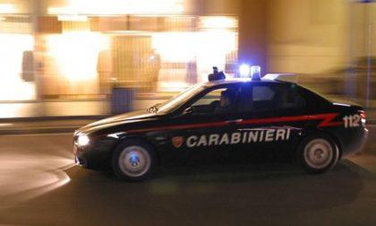 Accendono un falò nel bosco, arrivano i carabinieri