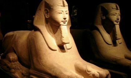 Its-Tam al lavoro per il Museo Egizio