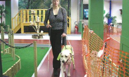Nessun regolamento comunale può vietare l'accesso nei locali pubblici ai cani guida per ciechi