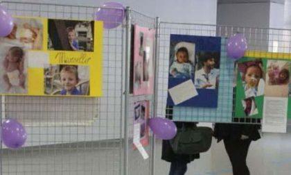 Per la Giornata del Neonato prematuro mostra all'ospedale di Biella