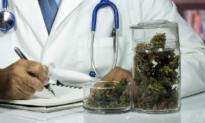 Cannabis terapeutica in tutte le farmacie