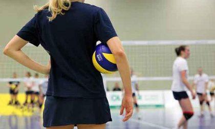 A Biella 1.350 atleti per il Bear Wool Volley