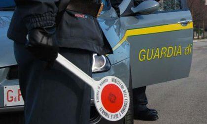 Allevatore ha evaso il Fisco per quasi 300mila euro
