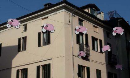 Lo installano i commercianti Confesercenti nel centro di Biella
