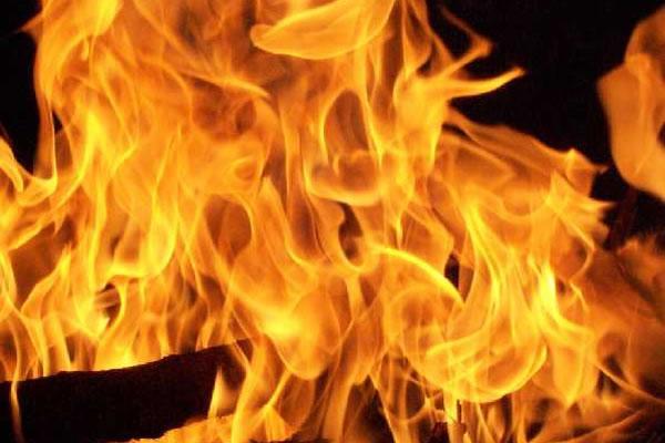 Bosco in fiamme a Zimone