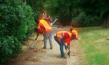 Ai giardini pubblici il lavoro volontario dei richiedenti asilo