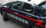"""""""Maltratta i suoi due cani"""", a Tollegno arrivano i carabinieri"""