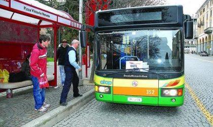 Sfascia a ombrellate il vetro dell'autobus