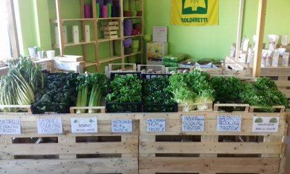 Natural Biella: frutta e ortaggi, piante e fiori a km 0