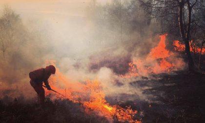 Incendi boschivi, continua l'allerta: rischio molto elevato nel Biellese
