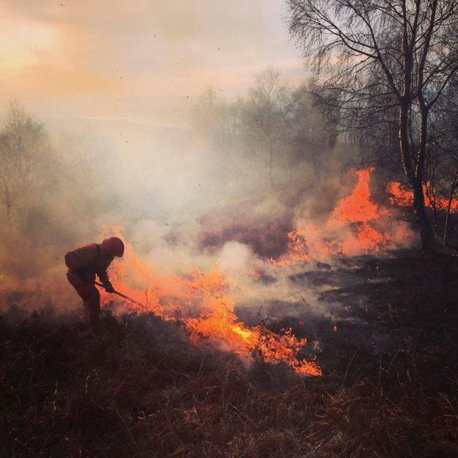Incendiari all&#8217&#x3B;opera, la Baraggia è in fiamme: disastro naturale