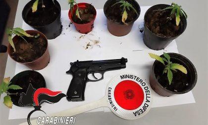 Minaccia con una pistola giocattolo un venditore di olio, gli trovano la droga