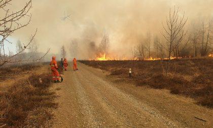 Incendi boschivi: revocato lo stato di massima pericolosità