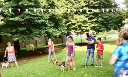 Qua la zampa, al parco Bau 20 cani con i loro padroni