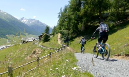 Livigno capitale d'elite della mountain-bike