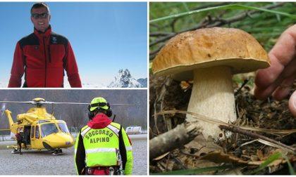 Via alla stagione dei funghi.  Appello Soccorso Alpino: già 9 morti nel 2019 in Piemonte