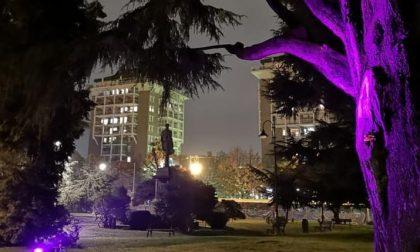 Giardini Zumaglini e le nuove luci colorate FOTO