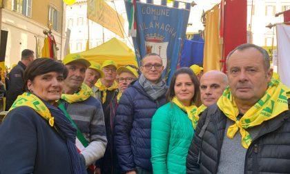 """Coldiretti Vercelli-Biella: """"Agire contro i cinghiali"""""""