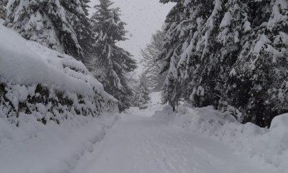 Forti nevicate in arrivo: allerta arancione, Protezione civile operativa