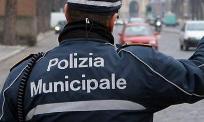 Polizia municipale di Cossato assume funzionario direttivo