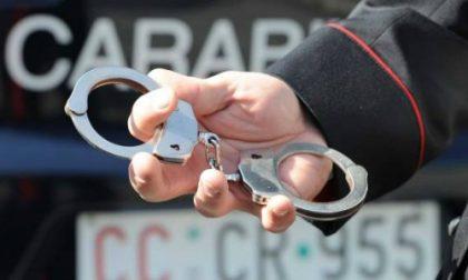 Aveva in casa 21 piante di droga: arrestato