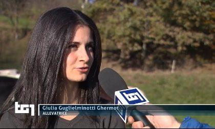 """Al TG1 """"La sfida di Giulia"""", consigliera comunale che a 25 anni alleva bovini a Mongrando"""