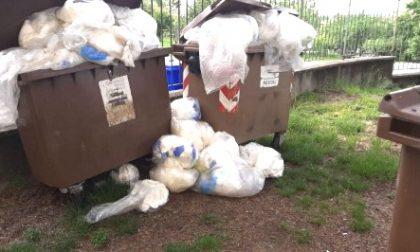 Covid-19 ora l'emergenza è sui rifiuti