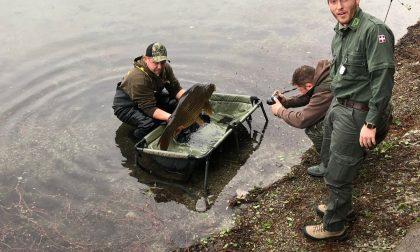 Pesca, domani si apre la stagione