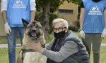 Colpito dal Covid si rifiutava di andare in ospedale per non separarsi dal cane. Ora sono di nuovo insieme VIDEO