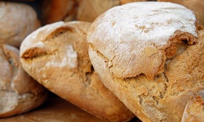 """Coldiretti: """"No alla speculazione sul prezzo del pane"""""""