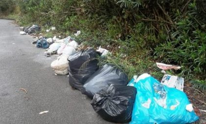 Ecco come spariranno i rifiuti abbandonati lungo le strade biellesi
